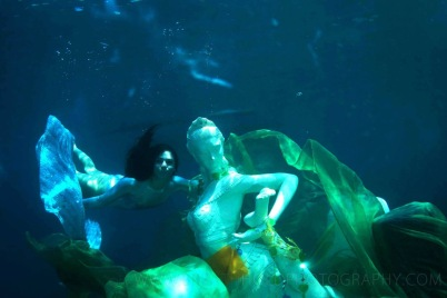 Living Sculptures in the Sea